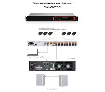 Biamp Конференц система для переговорной комнаты на 12 человек №1